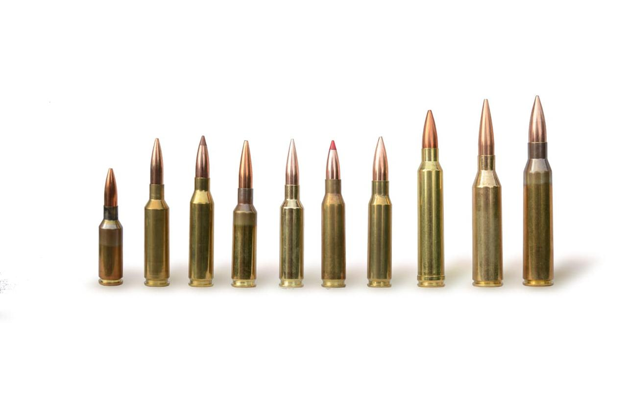 Illustration of popular long range calibers, cartridges arranged in  row, sorted by size