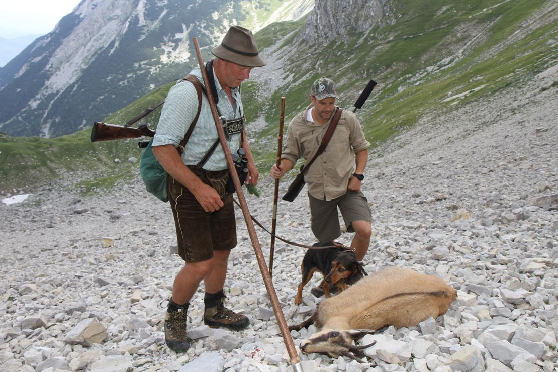 Two hunters in the mountains with killed chamois