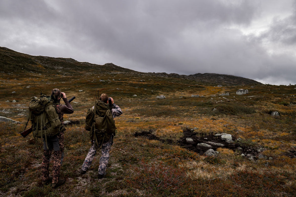 Two hunters in camouflage clothing look for reindeer with binoculars